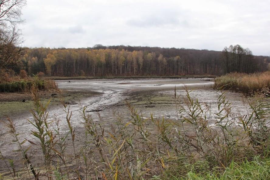 Polska akwakultura zagrożona