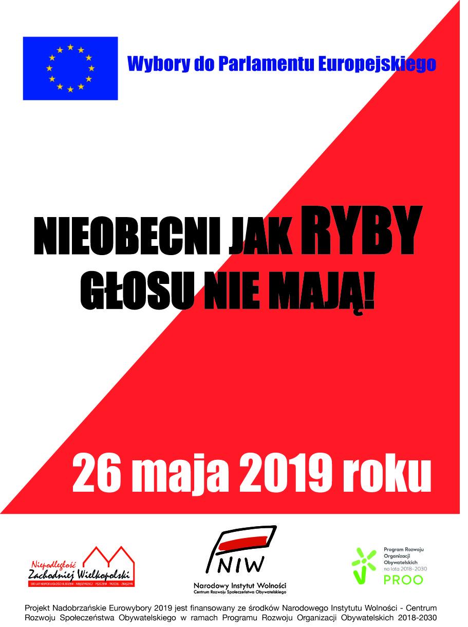 Nadobrzańskie Eurowybory 2019 – startujemy !