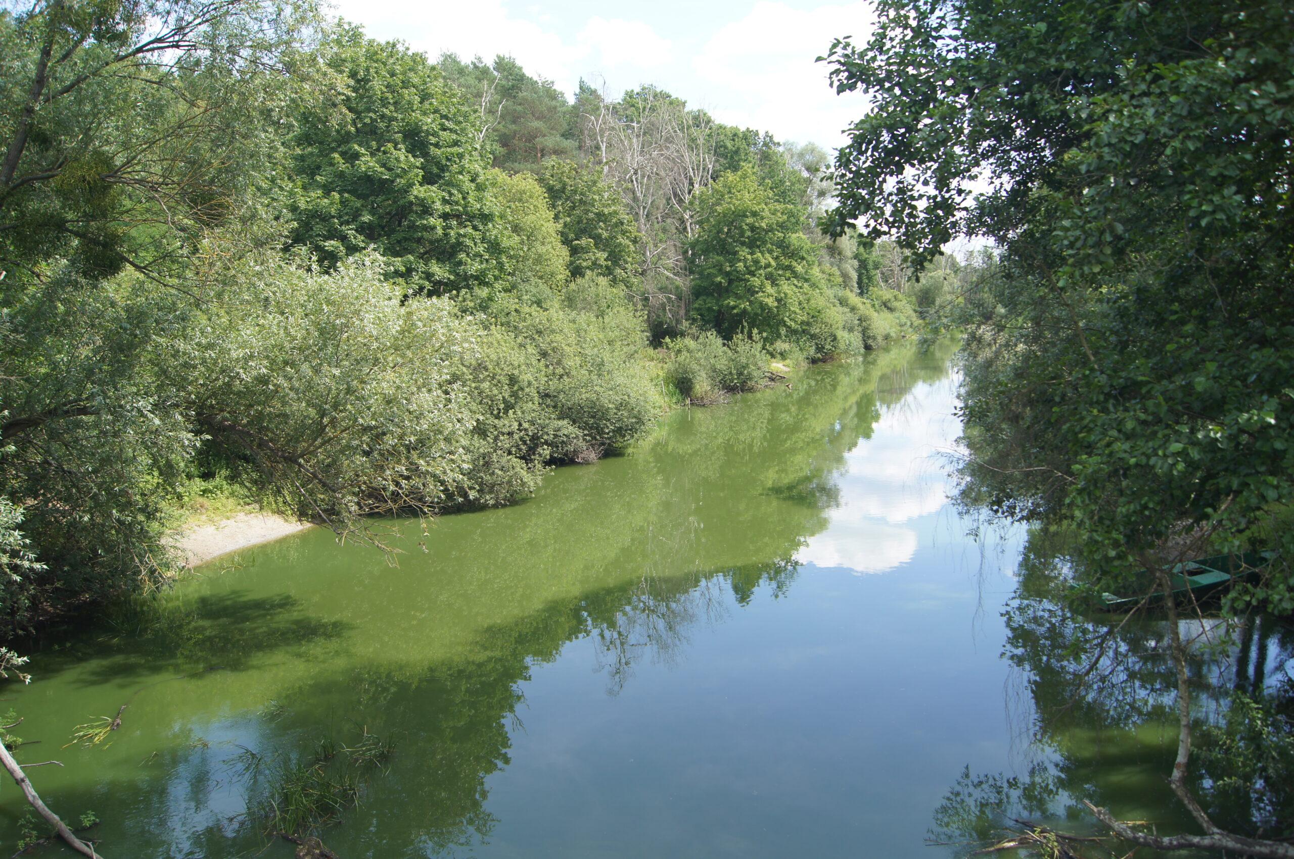 Wdrażamy stały monitoring Rzeki Obry